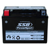 RTZ14-S High Peformance AGM Motorcycle Battery