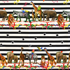 Animal Party in Multi
