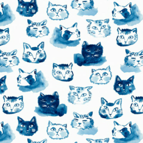 Cat Expressions in White