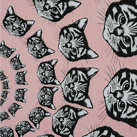 Cat-Finity in Pink