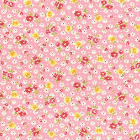 Daisy Field in Pink