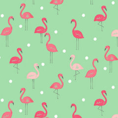 Flamingos in Paradise