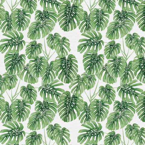 Monstera in Green