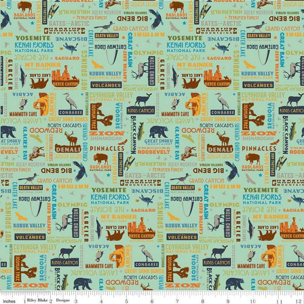 National Parks Word Print in Sea Green