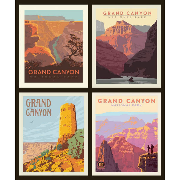 National Parks Grand Canyon Pillow PANEL in Black