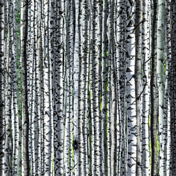 Forest Floor in Birch (digital spectrum print)