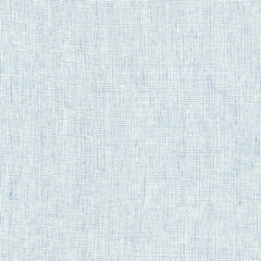 Essex Yarn Dyed Homespun (cotton / linen) in Chambray