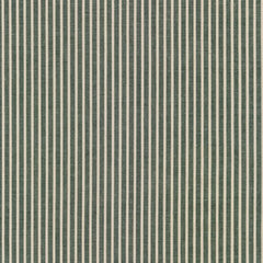 Crawford Stripes in Forest