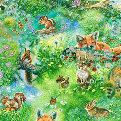 Baby Animals in Meadow