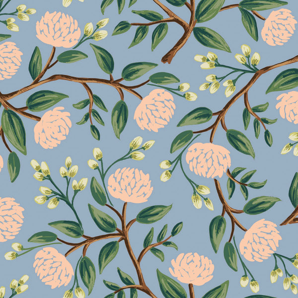 Peonies in Dusty Blue