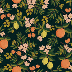 Citrus Floral CANVAS in Black