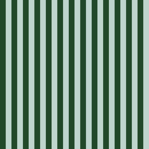 Cabana Stripe in Mint