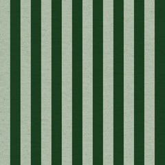 Cabana Stripe CANVAS in Mint