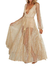 Plunge Mesh Sequined Maxi Dress