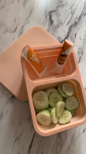 Food Travel Container - collapsible