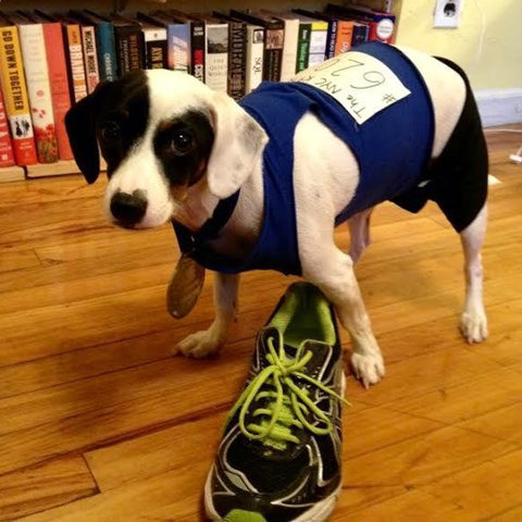 Dog Runner Costume