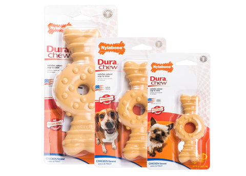 Nylabone Textured Ring Bone - Chicken Flavor