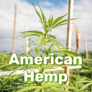 American Hemp: The Origins of Our CBD