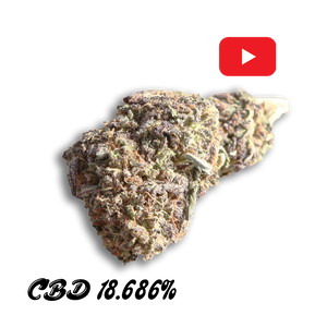 Purple Gas Hemp Flower - Good CBD Online Store