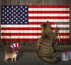 Fourth of July Pet Safety