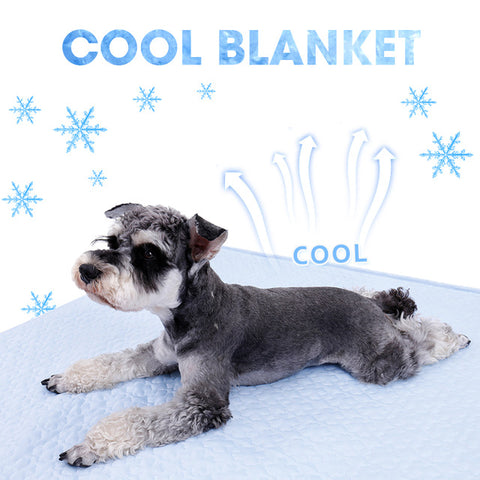 Cooling Pet Mat - Perfect for Summer
