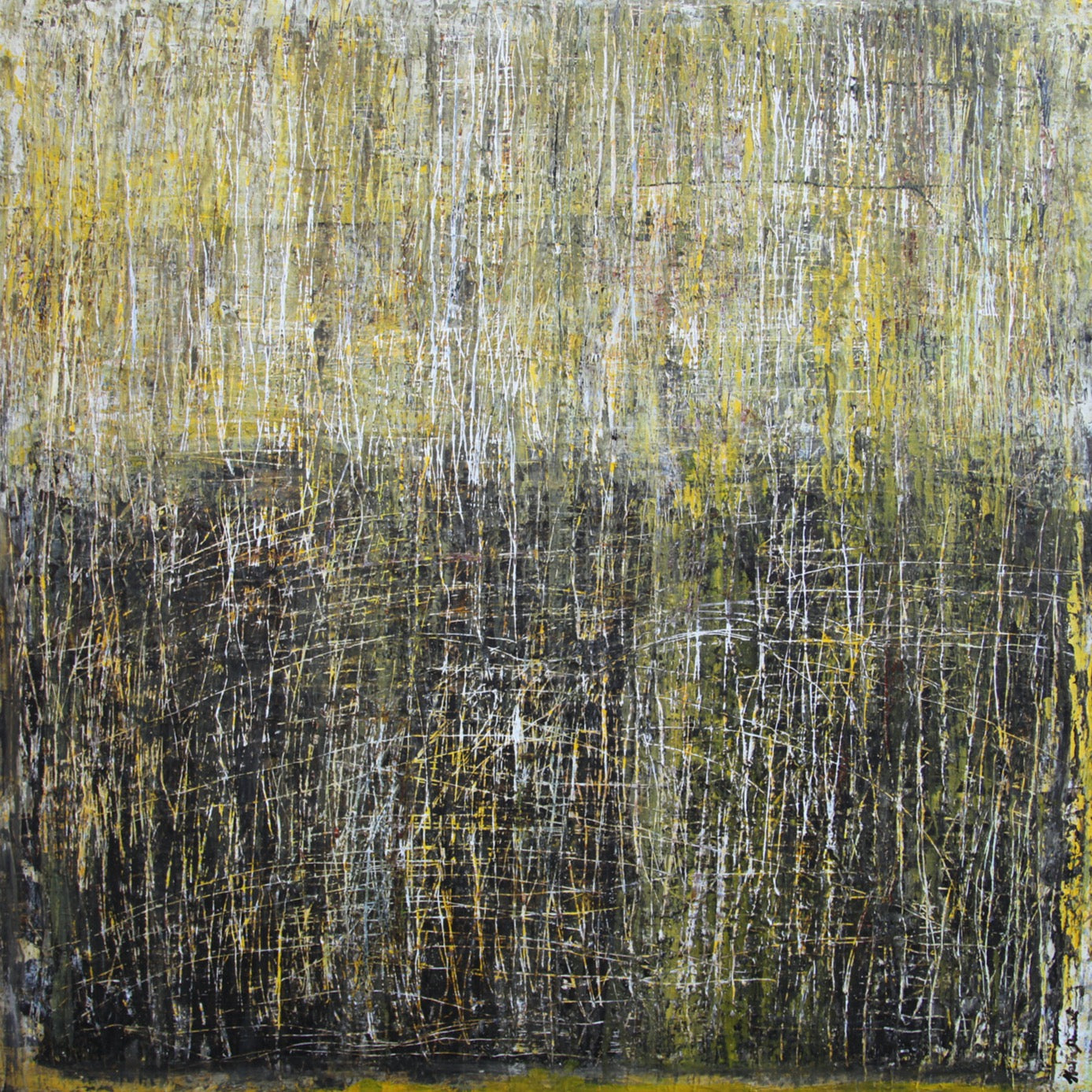 """Birch Tree"" by Halina Domanski 