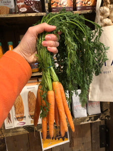 Organic Leafy English Carrots Bunch