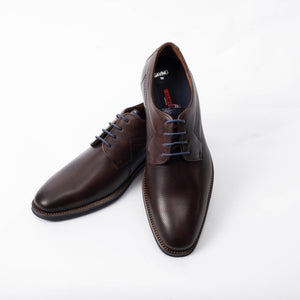 Brown Gavino Perforated Dress Shoe