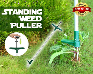 Standing Weed Puller
