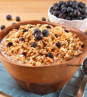 Mountain House Granola with Milk & Blueberries - 2 Servings - Survival Frog