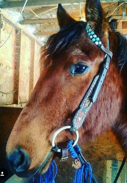 ONE EAR WESTERN BROWBAND