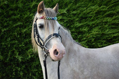 DOUBLE ROW NAMED SHAMBALLA BROWBAND
