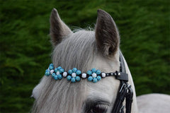 SHAMBALLA FLOWER BROWBAND