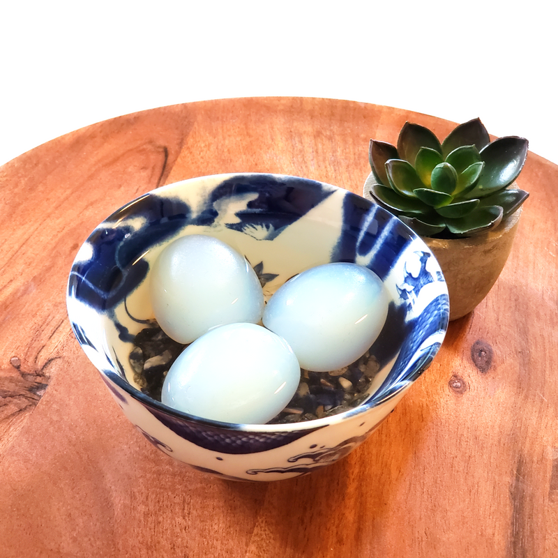 Blue Dragon Egg Protection Bowl