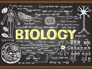 CBSE Biology - Class 10  - Live Online Small Group Class (4-6 Students) - 3 Months Revision Program - Starting on Jan 24th 2021