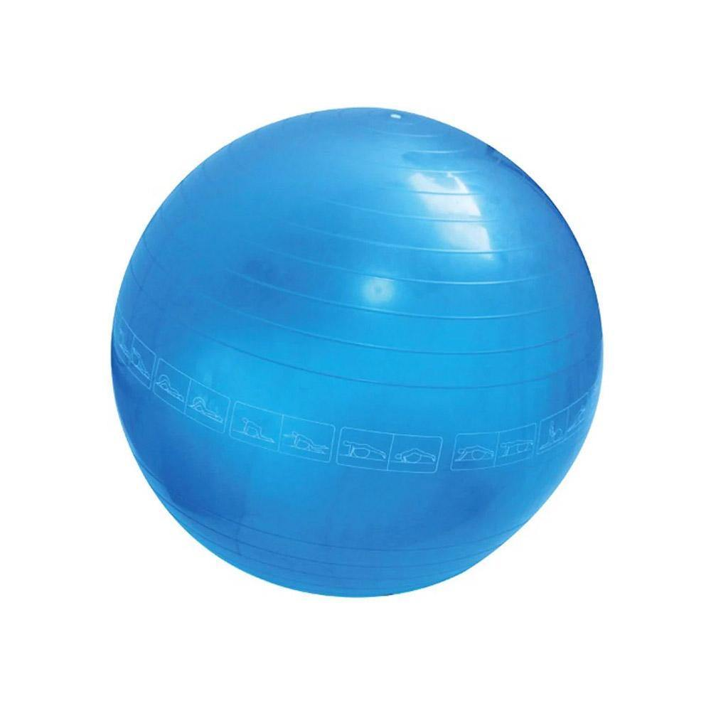 Gym Ball 55cm - El Deportista