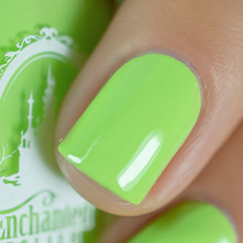 Enchanted Polish - Windbreaker