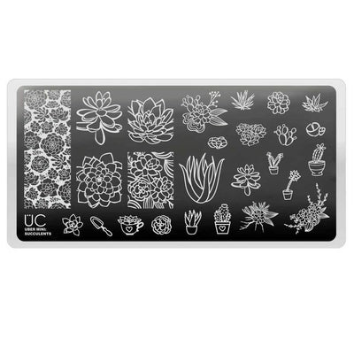 Uber Mini Succulents stamping plate
