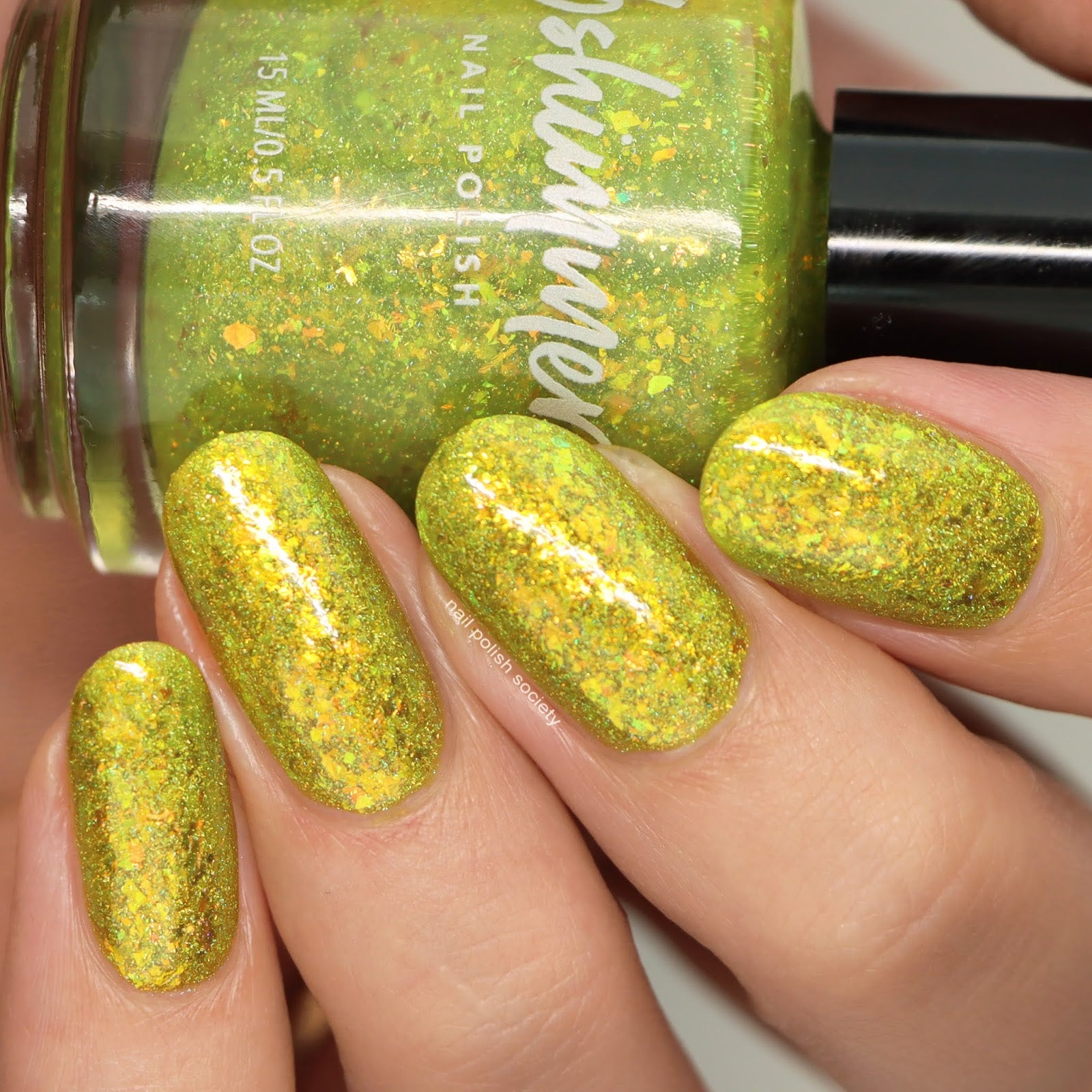 *PRE-SALE* KBShimmer - Something To Taco 'Bout