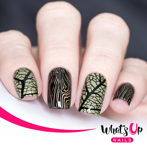 Whats Up Nails - B010 Texture Me Nature stamping plate