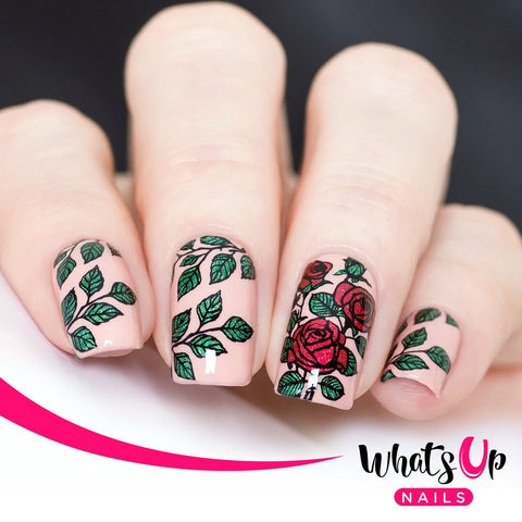 Whats Up Nails - B037 Growing Beauty Stamping Plate