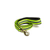 Pet Wale Reflective Green Leash with padded handle