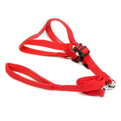 Pet Harness and Leash Set-Red- for Small Dog-(0.75 INCH)