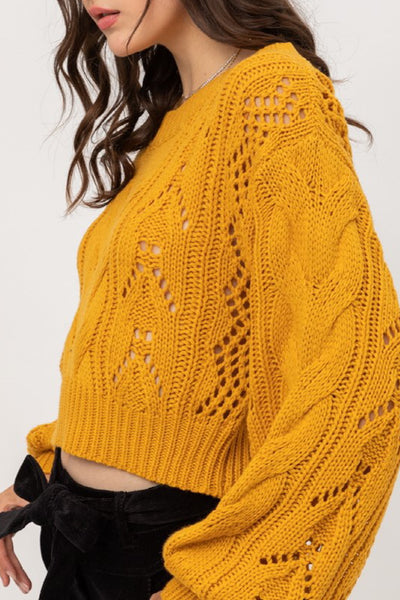 Relaxed Fit Yard Knit Long Sleeve Crop Sweater