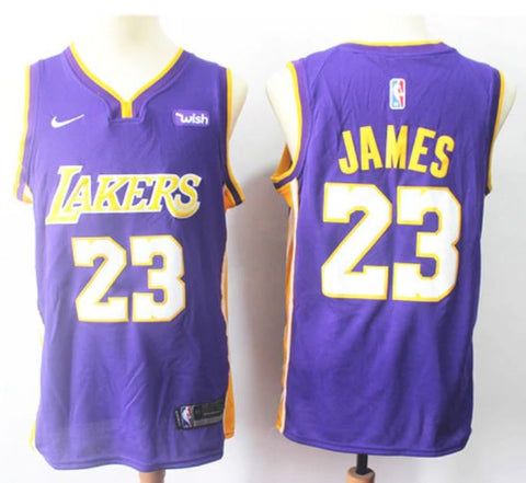 BUDGET LA LAKERS LEBRON James Purple - Free Delivery