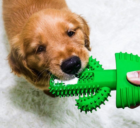 dog-teeth-cleaning-toy