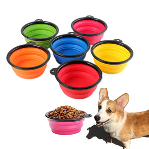 Dog Bowl By Doggy Bunch