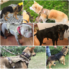 Load image into Gallery viewer, Premium Military Tactical Dog Harness & Vest