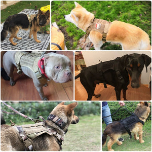 Premium Military Tactical Dog Harness & Vest