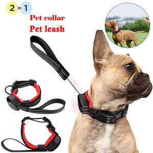 2 in 1 Dog Collar & Leash By Doggy Bunch